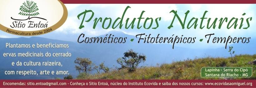 Cabecalho_Produtos