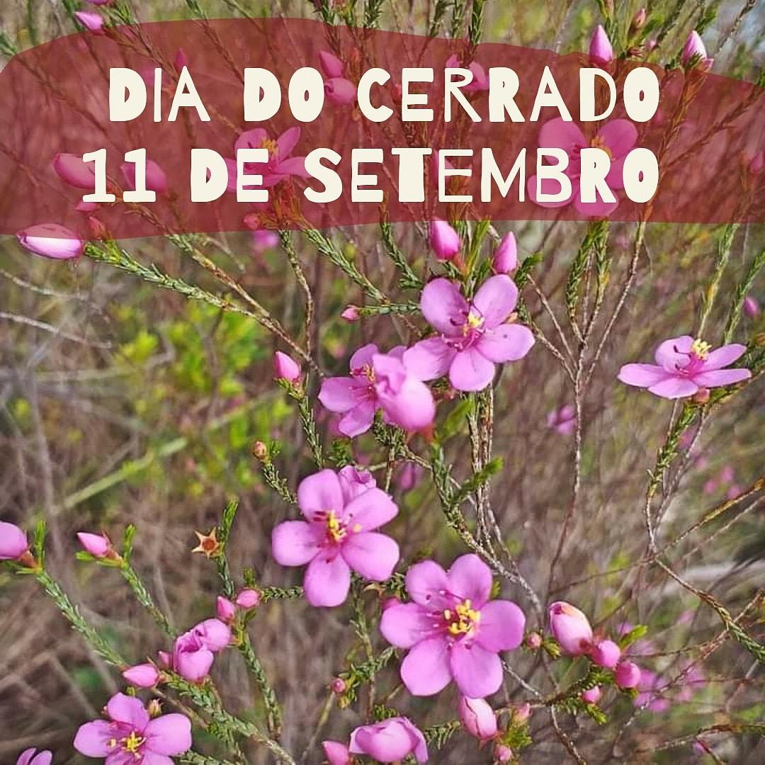 SEMANA DO CERRADO